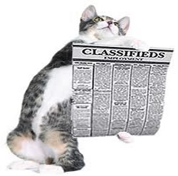 fatcat classifieds